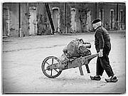 Winery worker, Bordeaux, France