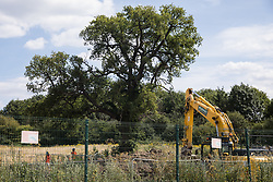 Harefield, UK. 22 July, 2020. HS2 workers monitor a mature tree alongside Harvil Road during tree felling works for HS2. Environmental activists from HS2 Rebellion and Stop HS2 continue to protest against the high-speed rail link, which is currently projected to cost £106bn and will remain a net contributor to CO2 emissions during its projected 120-year lifespan, from a series of wildlife protection camps along its route.