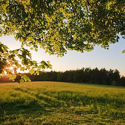 The sun sets over a hay field at Raspberry Farm in Hampton Falls, New Hampshire.
