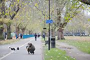 London Fields, Hackney, London CREDIT: Vanessa Berberian for The Wall Street Journal<br /> HACKNEY-Lana Wrightman