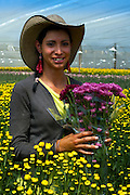 Portrait of a flower farm worker wearing a traditional Colombian hat, holding a bouquet of Chrysantemums.  Colombia is one of the world's biggest exporters of cut flowers because of its year round spring like temperatures.