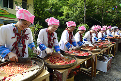 September 2, 2017 - Women chop newly harvested chili peppers as they take part in a competition in the annual Chili Pepper Festival in Mahai Village of Longji Town, Multinational Autonomous County of Longsheng of south China's Guangxi Zhuang Autonomous Region. The village celebrates chili pepper harvest in this time of the year by organizing games like pepper plucking, pepper chopping, chicken chasing and fishing. (Credit Image: © Wu Shengbin/Xinhua via ZUMA Wire)