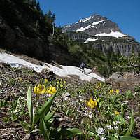 The trail to Stoney Indian Pass in Glacier National Park's backcountry.