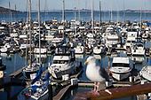 SF Waterfront –Port of San Francisco