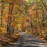 Old Foothill Parkway - Autumn - Fall Color - Great Smoky Mountains