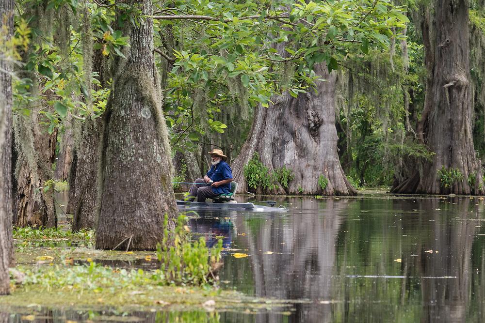 Boat tour on the bayou Lake Martin near Lafayette