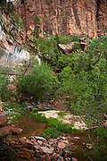 Waterfall at Lower Emerald Pools in Zion National Park
