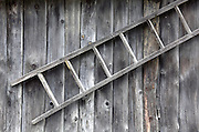 wooden ladder against plank wall of an old paintless shed