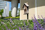 Insectenhotel bij groenstoken in de stad - Insect hotel at in parks between buildings in the city