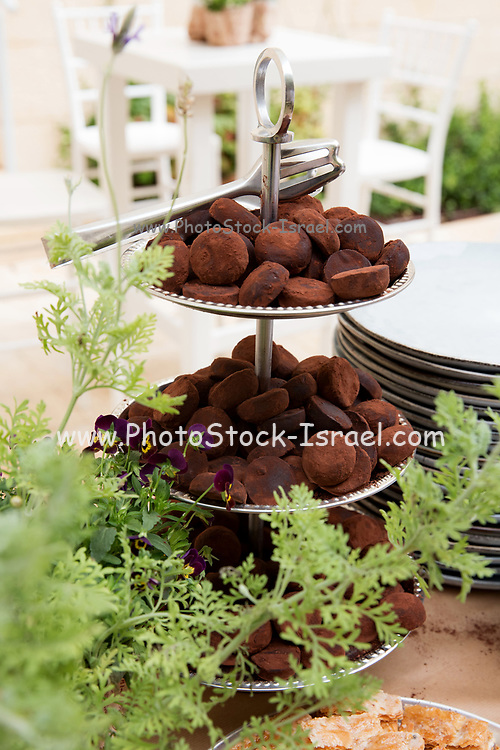 Chocolate truffles with cocoa powder on a buffet table