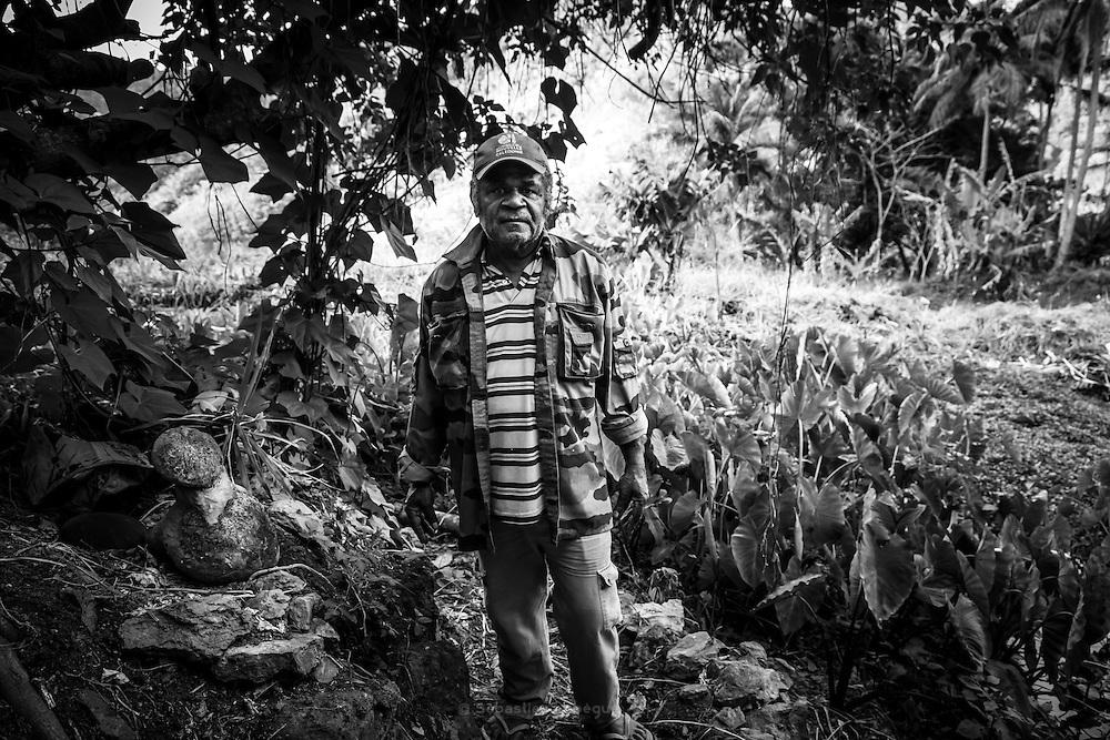 NOUVELLE CALEDONIE, Canala - Rite de la pierre sacree de taro fait par Clement Brukooua, chef du clan du taro de la tribu de Ema - Lorsque la bouture de taro est tapee sous la face de la pierre sacre, cela permet de donner la force à la croissance du tubercule et assure une bonne recolte - Septembre 2013
