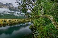Oceania, New Zealand, Aotearoa, South Island, Te Anau, Southland, Fiordland National Park, Mirror lakes