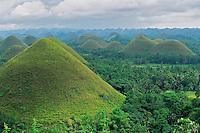 Chocolate Hills on Bohol Island, Philippines.  Nov 01.