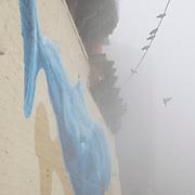 Early morning dense fog