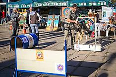 Demonstração Cães da Brigada Militar