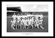 This shot of the Kildare Junior Hurling Champions is a great anniversary gift for someone who is interested in Irish hurling or sports in Ireland.