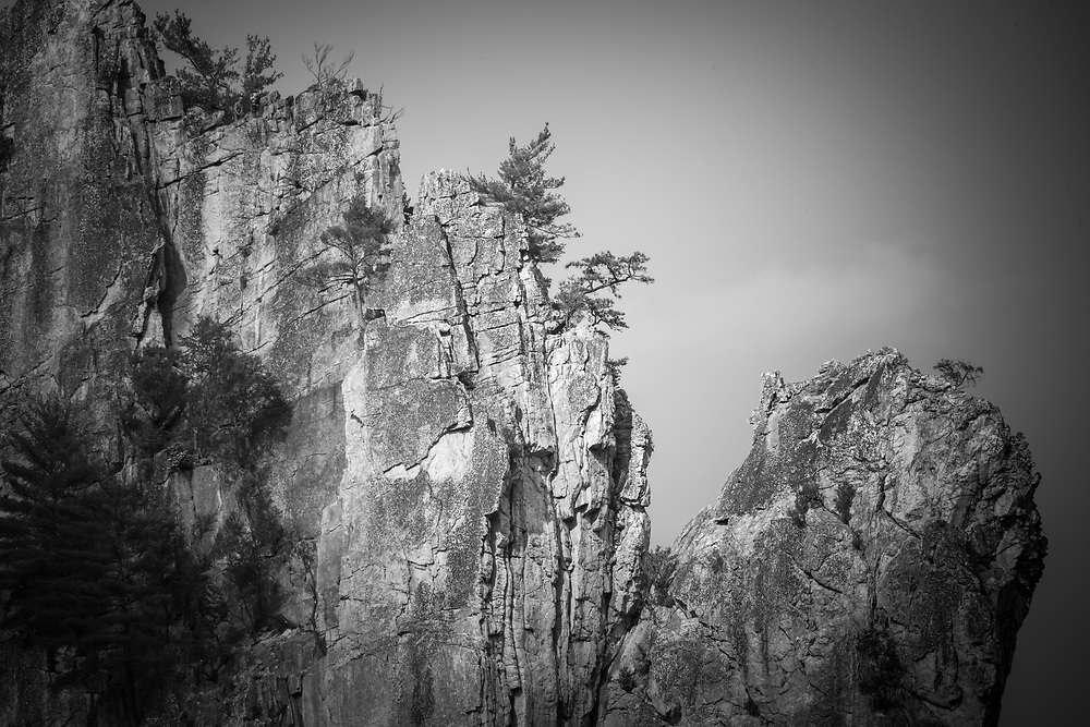 """Seneca Rocks ( Pendleton County, West Virginia. ) has 375 major mapped climbing routes, and rock climbers can be seen scaling the faces during all seasons of the year.  Pictured here is the """"Traffic Jam"""" as you move towards the """"Face of a Thousand Pitons"""""""