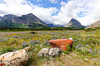 Landscape photography in the Many Glacier region of Glacier National Park<br /> <br /> ©2016, Sean Phillips<br /> http://www.RiverwoodPhotography.com
