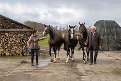 Zodena, Gatika, Tikita, Jakita, Van der Aa Willy, Betsie, Van de Sande Peter<br /> Stal Willy Van der Aa - Vinkel 2021<br /> © Hippo Foto - Dirk Caremans<br /> 17/03/2021