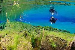 Silfra-Spalte Lagune, Tauchen in der Kontinentalspalte Silfra, thingvellir Nationalpark, Island, Silfra-Crack lagoon, Scuba diving in the continental fissure, crack Silfra, thingvellir Nationalpark, Iceland, MR YES