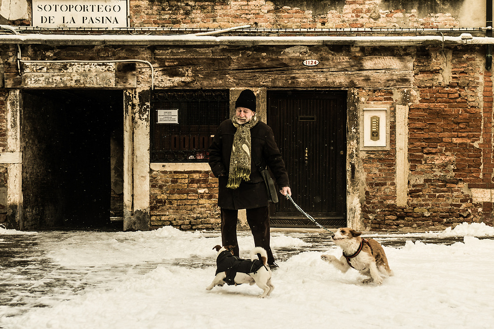 """VENICE, ITALY - 28th FEBRUARY/01st MARCH 2018<br /> Dogs play in the snow after a snowfall in Venice, Italy. A blast of freezing weather called the """"Beast from the East"""" has gripped most of Europe in the middle of winter of 2018, and in Venice A snowfall has covered the city with white, making it fascinating and poetic for citizen and tourists.   © Simone Padovani / Awakening"""