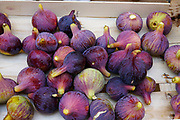 Many fresh figs