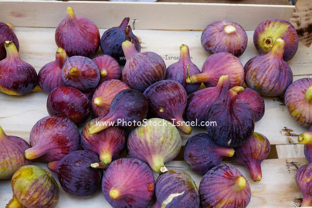 Many fresh figs