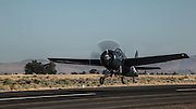FM-2 Wildcat of the Erickson Aircraft Collection taking off.
