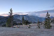 Yosemite NP, CA  (RP13565).<br /> A grey bank of cloud ironically stalled on the summit of Cloud's Rest this morning, while the sky lit up in degrees of pink.  I had climbed this granitic dome, stopping every few yards to survey the image possibilities behind me.  Erratics were strewn around like giant pebbles on the open rock, and a couple of Jeffrey pines stood to frame the ridgeline.