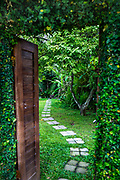 Lush green area with wood door, stone path and everything else green live plants.