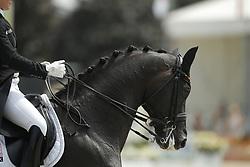 Bröring-Sprehe, Kristina (GER), Desperados FRH<br /> Hagen - CDIO Nationenpreis Dressur 2015<br /> Grand Prix Special<br /> © www.sportfotos-lafrentz.de/Stefan Lafrentz