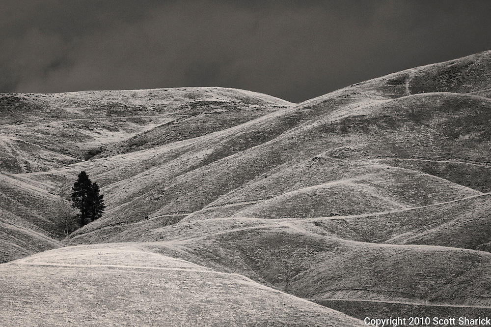 Winter was chasing at my back but these hills still stand bare in anticipation of the winter yet to come.