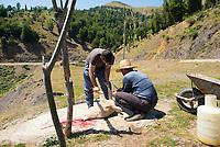 Iran, 20.08.2016: Männer schlachten ein Schaf an einem kleinen Rastplatz an der Strasse von Punel nach Khalkhal, Höhe Ardeh/Sangdeh, Provinz Gilan, Nord-Iran.