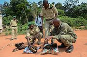 Bushmeat inspection & monkey & duiker<br /> Yengo Eco Guard control point<br /> Odzala - Kokoua National Park<br /> Republic of Congo (Congo - Brazzaville)<br /> AFRICA