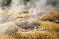 Fuente termal, Yellowstone NP, Wyoming (Estados Unidos)