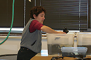 Dr. Jean Hudson at UW-Milwaukee working on the examination and preservation of the Silver Beach Elk skeleton recovered from Middle Eau Claire Lake in Bayfield County, Wisconsin