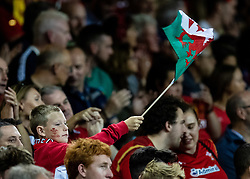 A young Wales fan enjoying the atmosphere<br /> <br /> Photographer Simon King/Replay Images<br /> <br /> Friendly - Wales v Ireland - Saturday 31st August 2019 - Principality Stadium - Cardiff<br /> <br /> World Copyright © Replay Images . All rights reserved. info@replayimages.co.uk - http://replayimages.co.uk