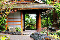 Japanese style shelter in the Bellevue Botanical Gardens
