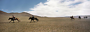 During a Nadaam horserace (about 20 Km speed race). Youngest racer are between 5 and 7 years old.<br /> Winning a race is quite the feat—prizes for winners include horses, and sometimes cars.<br /> Mongolian's nomadic lifestyle and traditions.