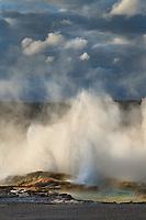 Clepsydra Geyser along the Fountain Paint Pot Trail Yellowstone National Park