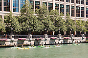 Kayakers on the Chicago River viewed from Riverwalk on a summers day in Chicago, Illinois, USA