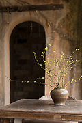 Vase on table and arched door, Pigs Inn, Bishan, Anhui Province, China