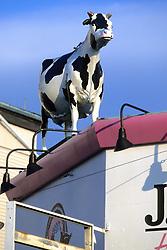Fake Cow On Ice Cream Shop Roof Display