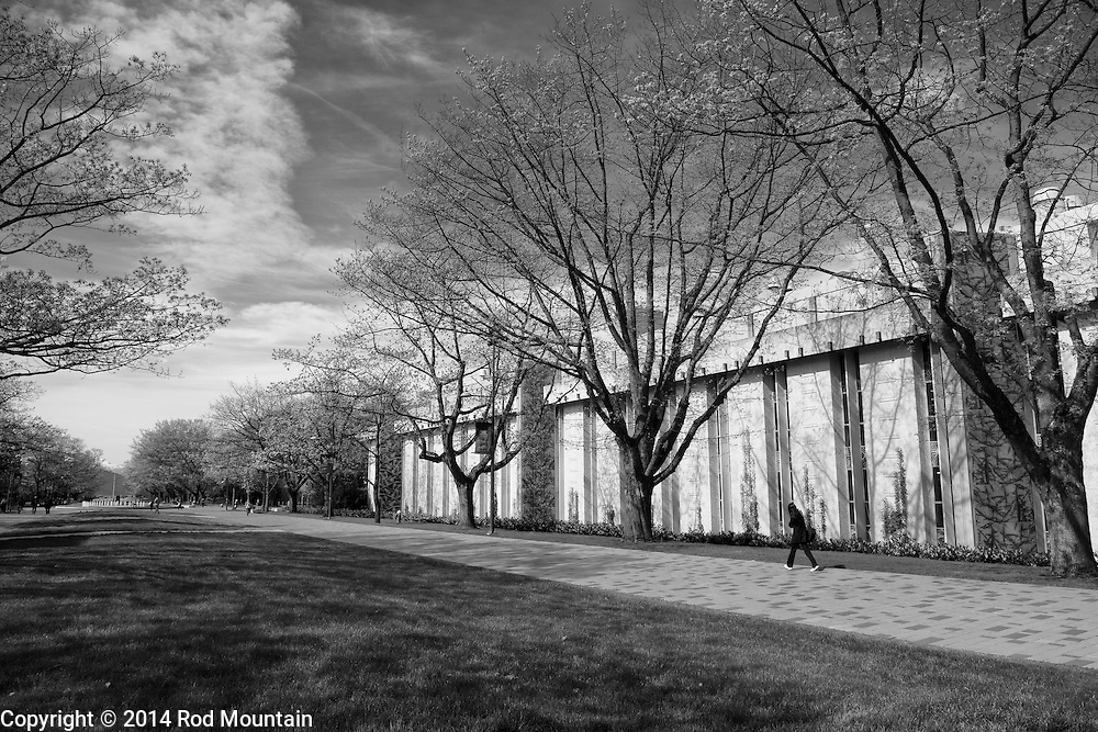 Scene along a pathway at the University of British Columbia. Vancouver, BC Photo: © Rod Mountain