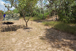 Land Mine Field