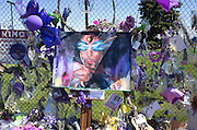 Large colorful painting of Prince with purple sunglasses on memorial fence. Paisley Park Studios Chanhassen Minnesota MN USA