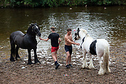 Two young men, one of them shirtless, trade horses after washing them in the River Eden at Appleby Horse Fair, the biggest gathering of Gypsies and travellers in Europe, on 14th August, 2021 in Appleby, United Kingdom. Appleby Horse Fair attracts thousands from Gypsy, Romany, and traveller communities annually, making it the biggest gathering of its kind in Europe. Generally held for a week every June, the fair was postponed in 2020 and pushed forward to August in 2021 due to Coronavirus.