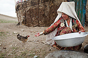Gul Soon offers food to the only remaining chicken in the Pamir - it lost one of its leg to frostbite in previous years..Summer camp of Muqur, Er Ali Boi's place...Trekking through the high altitude plateau of the Little Pamir mountains (average 4200 meters) , where the Afghan Kyrgyz community live all year, on the borders of China, Tajikistan and Pakistan.