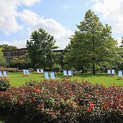 Regents Park Lawn Chairs - London, UK