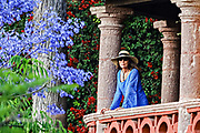 A European woman looks out from her balcony next to a flowering Jacaranda tree in San Miguel de Allende, Mexico.